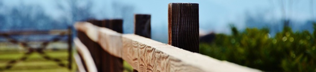 Timber Fencing| Buy Timber Fencing Online from the Specialists at Brigstock Sawmill
