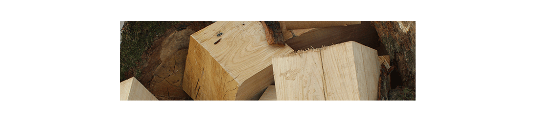 Unseasoned and Economy Firewood | Supplied by the specialists at Brigstock Sawmill